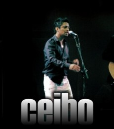 Contratar Ceibo (011-4740-4843) Onnix Entretenimientos