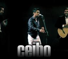 Ceibo-onnix-entretenimientos-representante-artistico-contratar-oficial-ceibo-2 (4)