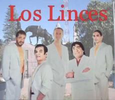 Los_linces_onnix_entretenimientos_los_linces_representante_artistico-3 (3)