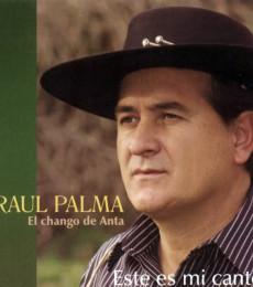 Contratar Raul Palma (011-4740-4843) Onnix Entretenimientos