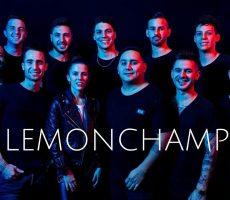 Contratar-a-lemonchamp (4)